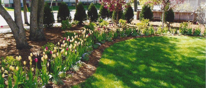 Commercial Perennial Garden
